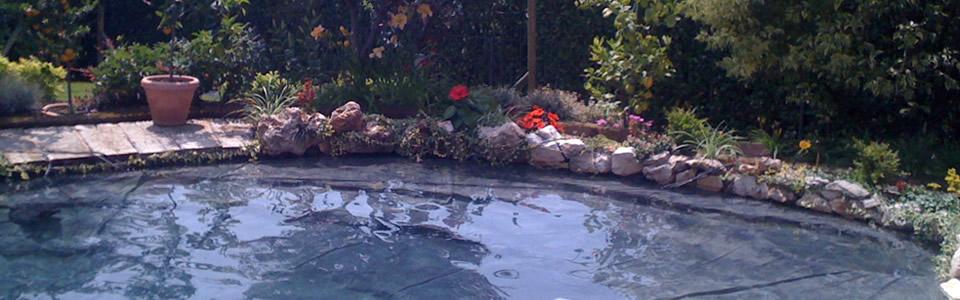 Acquari varese ticino iperanimal for Laghetti ornamentali