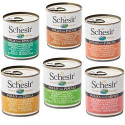 schesir-adult-dog