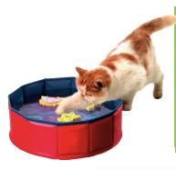 piscine per cani e gatti